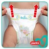 Pampers Pants Mega Box S7 80 pcs  plienkové nohavičky - Brendon - 22820802